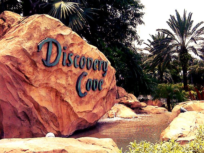 discovery-cove-orlando